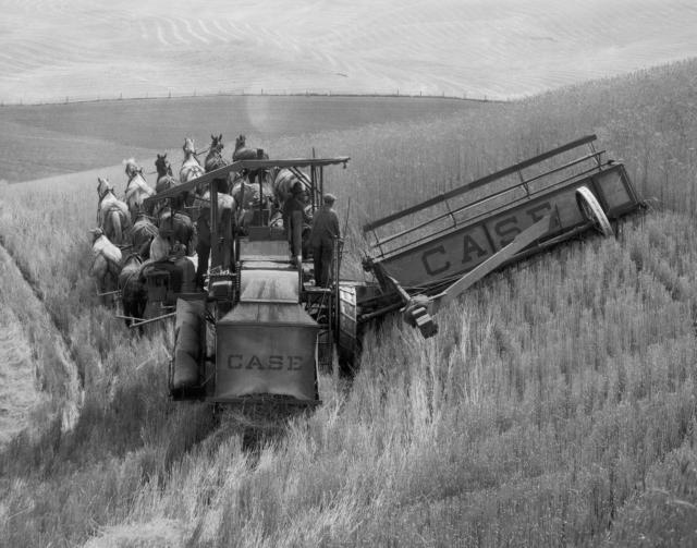 Webcase-ih-historical_combines_harvesting_equipment-historical